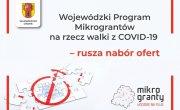 Wojewódzki Program Mikrograntów